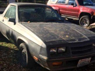 1984 spokane wa