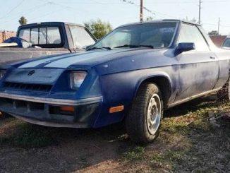 1982 phoenix az